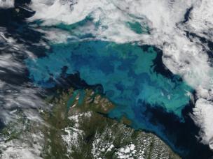 Аппаратура «Швабе» сделала высокодетальные снимки из космоса