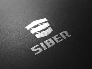 «СИБЕР» и китайская DeWe Group возьмут под охрану Шелковый путь