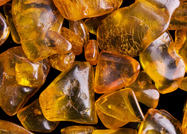 The Kaliningrad Amber Combine Resumes Cooperation With the Largest Japanese Jewelry Company