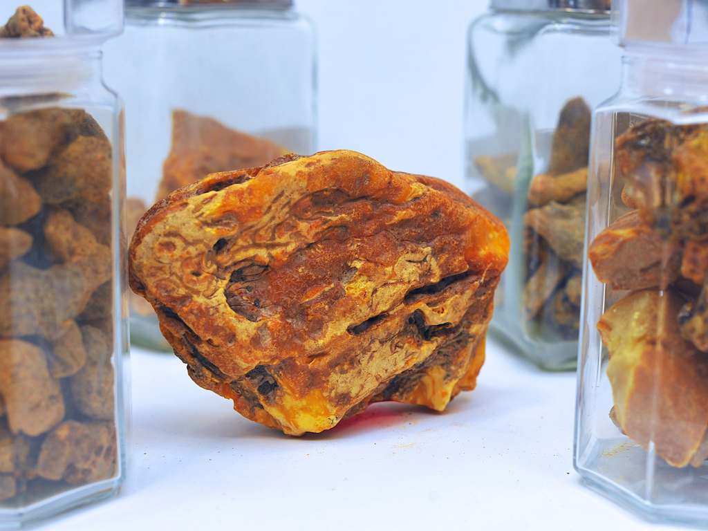 Kaliningrad Amber Combine to Sell 20 Large Nuggets by Public Auction